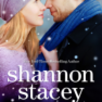 REVIEW: Shannon Stacey's SNOWBOUND WITH THE CEO, Or Cabin Fervor