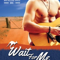 MINI-REVIEW: Sarah Mayberry's WAIT FOR ME
