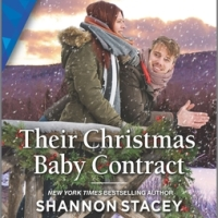 MINI-REVIEW: Shannon Stacey's THEIR CHRISTMAS BABY CONTRACT (Blackberry Bay #2)